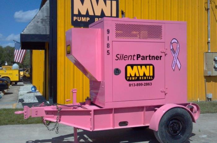 Silent Partner: Pink Pump