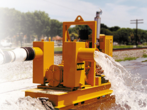 rotoflo water pump
